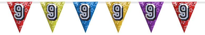 Number 9 Triangle Holographic Bunting - 8m Product Image