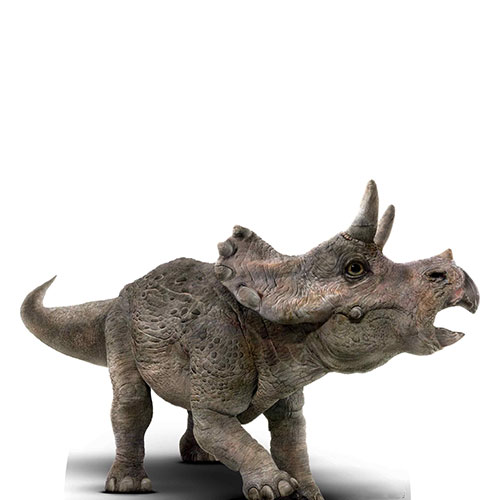 Official Jurassic World Baby Triceratops Dinosaur Mini Lifesize Cardboard Cutout 61cm