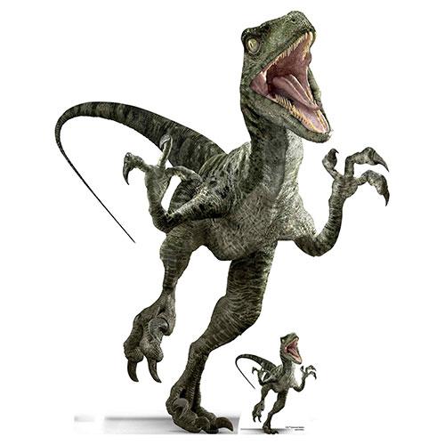 Official Jurassic World Charlie Raptor Dinosaur Lifesize Cardboard Cutout 129cm Product Image