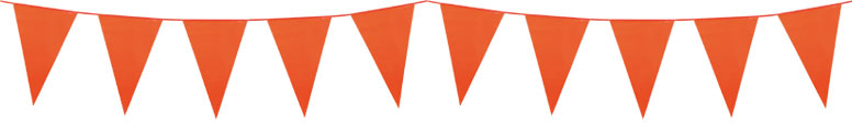 Orange Plastic Pennant Bunting 10m Product Image