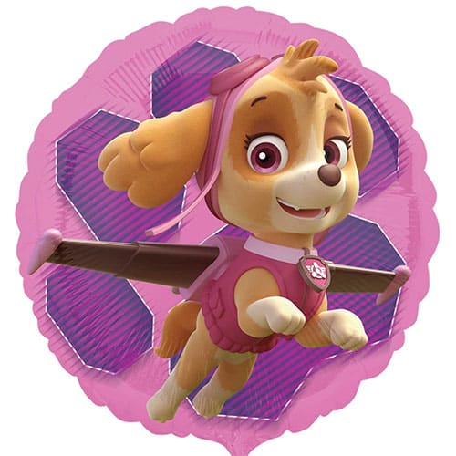 Paw Patrol Pink Skye And Everest Round Foil Helium Balloon 43cm / 17Inch Product Gallery Image