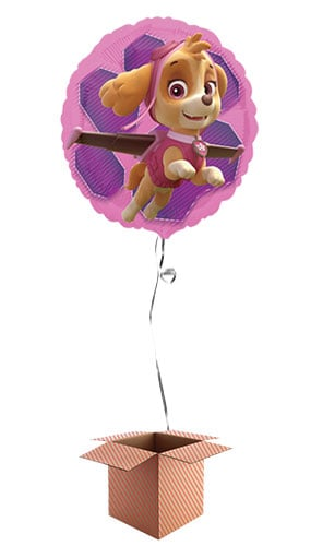 Paw Patrol Pink Skye And Everest Foil Helium Balloon - Inflated Balloon in a Box Product Gallery Image
