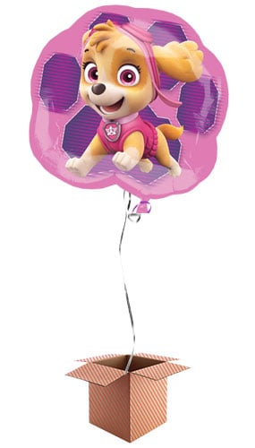 Paw Patrol Pink Skye And Everest Helium Foil Giant Balloon - Inflated Balloon in a Box Product Image