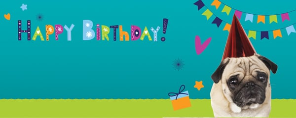 Happy Birthday Pug With Party Hat Design Small Personalised Banner - 4ft x 2ft