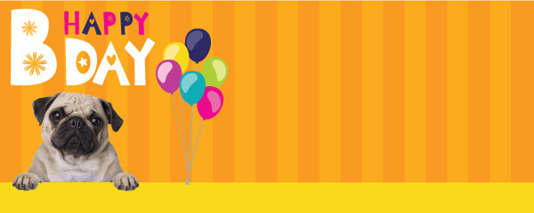 Happy Bday Pug And Balloons Design Small Personalised Banner - 4ft x 2ft