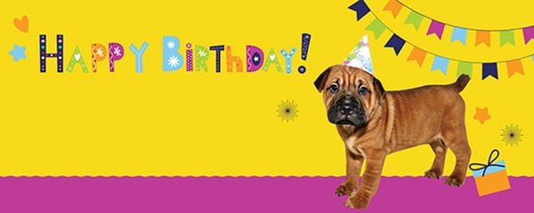 Birthday Party Puppy Design Small Personalised Banner - 4ft x 2ft