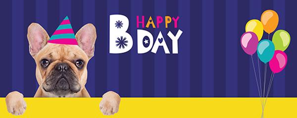 Happy Bday Puppy French Bulldog Design Medium Personalised Banner - 6ft x 2.25ft