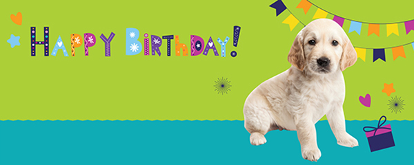 Happy Birthday Sitting Puppy Design Large Personalised Banner - 10ft x 4ft