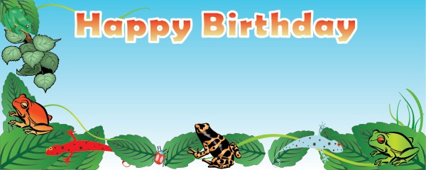 Frogs & Lizards Party Happy Birthday Design Medium Personalised Banner - 6ft x 2.25ft