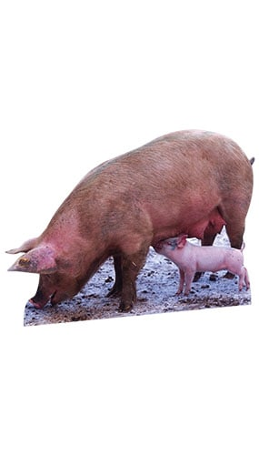 Pig and Piglet Lifesize Cardboard Cutout - 92cm Product Image