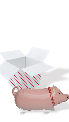 Pig Walking Pet Foil Helium Balloon - Inflated Balloon in a Box Product Image