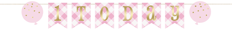 Pink Gingham First Birthday 1 Today Cardboard Pennant Banner 182cm