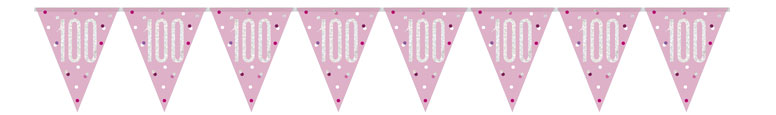 Pink Glitz Age 100 Holographic Foil Pennant Bunting 274cm