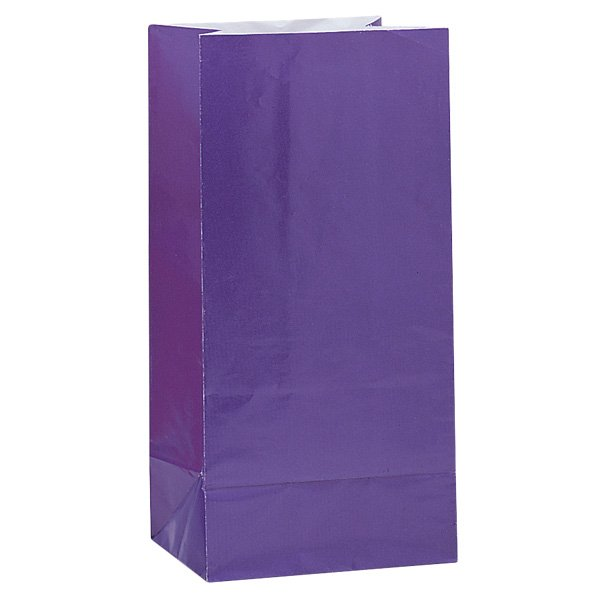 Purple Paper Party Bag - Pack of 12 Product Image