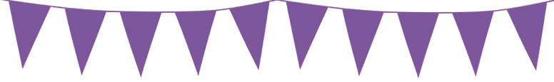 Purple Plastic Pennant Bunting 10m