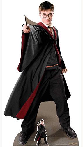 Quidditch Captain Harry Potter Lifesize Cardboard Cutout 170cm
