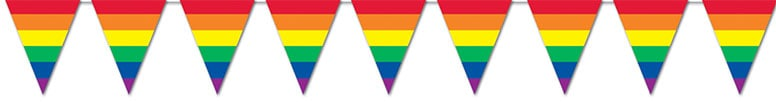 Rainbow Plastic Pennant Banner - 12 Ft / 366cm Product Image
