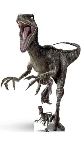Raptor Dinosaur Lifesize Cardboard Cutout 135cm