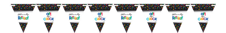 Retirement Paper Pennant Bunting 4.57m Product Image