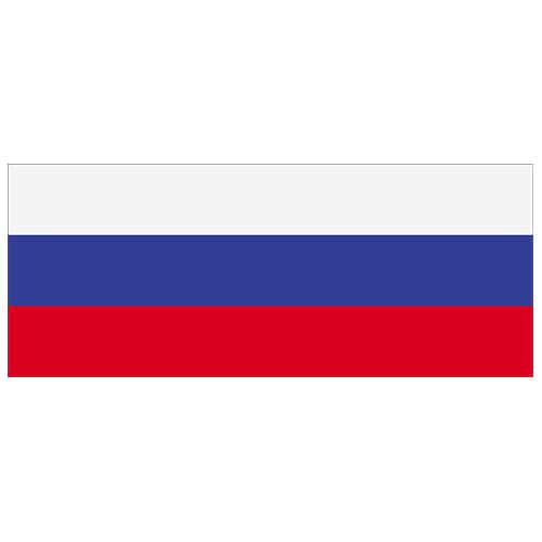Russia Flag PVC Party Sign Decoration 60cm x 24cm
