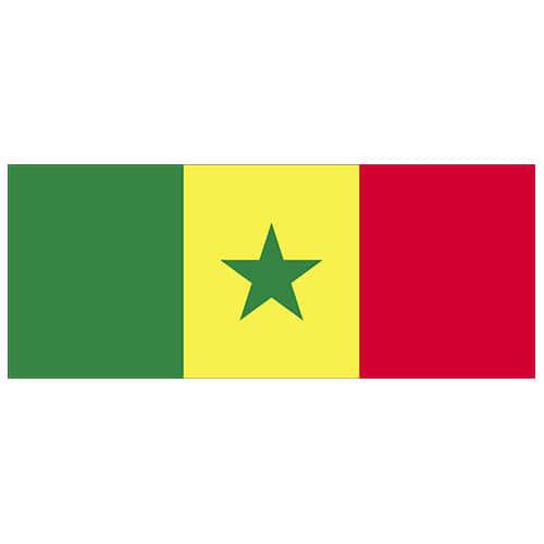 Senegal Flag PVC Party Sign Decoration 60cm x 24cm