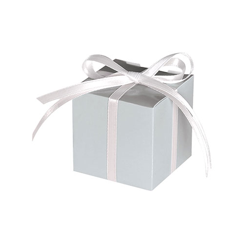 Silver Paper Treat Boxes - Pack of 12