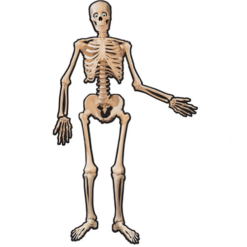 Halloween Skeleton Jointed Cutout 134cm Product Image