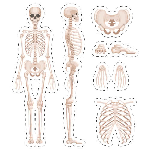 Halloween Skeleton Cutting Sheet PVC Party Sign Decoration 133cm x 133cm Product Image