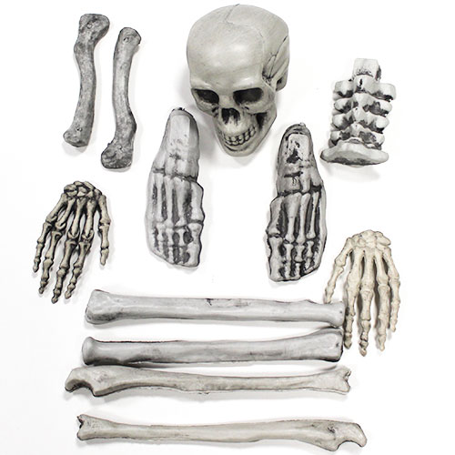 Skull And Bones Halloween Plastic Props Decorations - Pack of 12  Product Image