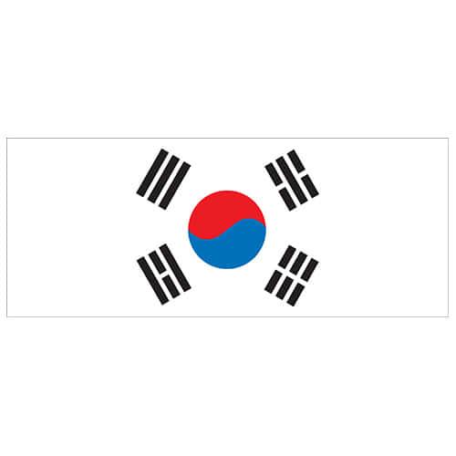South Korea Flag PVC Party Sign Decoration 60cm x 24cm