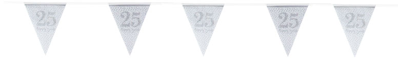 Sparkling Silver Anniversary Prismatic Bunting 400cm Product Image