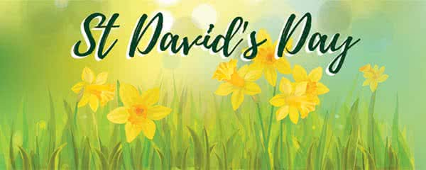 St Davids Day Yellow Daffodil Design Medium Personalised Banner - 6ft x 2.25ft