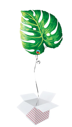 Tropical Philodendron Leaf Shape Helium Foil Qualatex Balloon - Inflated Balloon in a Box