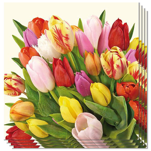 Tulips Luncheon Napkins 3 Ply - 33cm - Pack of 20 Product Image