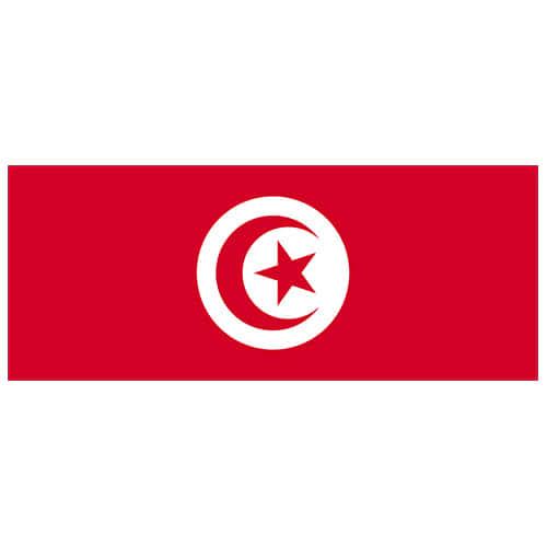 Tunisia Flag PVC Party Sign Decoration 60cm x 24cm Product Image