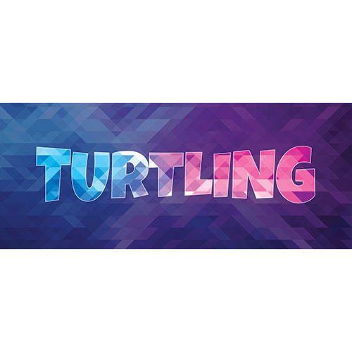 Turtling Home Screen Background PVC Party Sign Decoration 60cm x 25cm Product Image