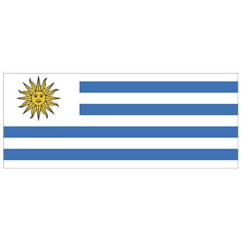 Uruguay Flag PVC Party Sign Decoration 60cm x 24cm