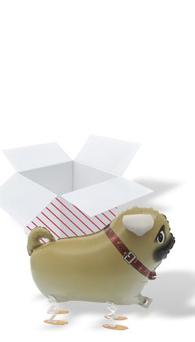 Walking Pet Pug Foil Helium Balloon - Inflated Balloon in a Box Product Image