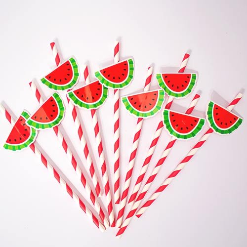 Watermelon Paper Straws - Pack of 20 Product Image