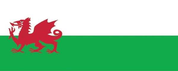 Welsh Flag Design Medium Personalised Banner - 6ft x 2.25ft