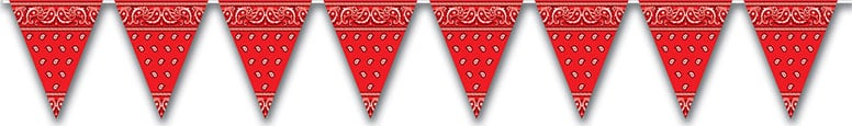 Western All Weather Pennant Banner - 12 Ft / 366cm