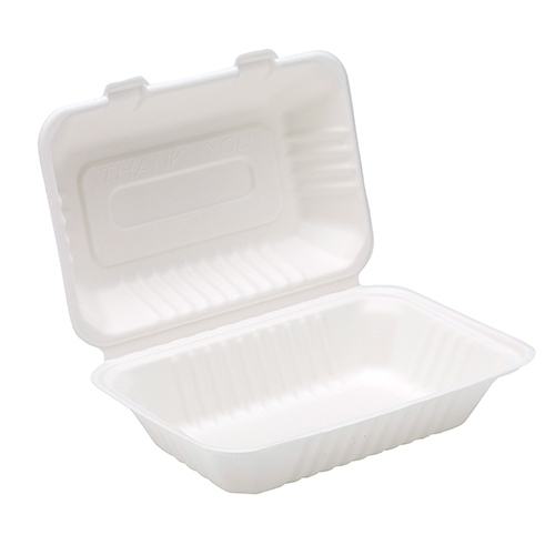 White Compostable Bagasse Lunch Box 23cm - Pack of 125 Product Image