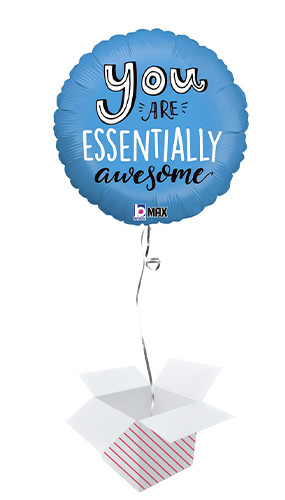 You Are Essentially Awesome Round Foil Helium Balloon - Inflated Balloon in a Box Product Image