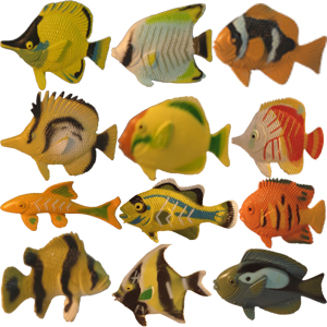 Assorted Tropical Fish - Single