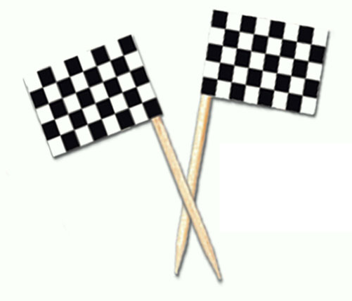 Black and White Racing Flag Food Picks - Pack of 50