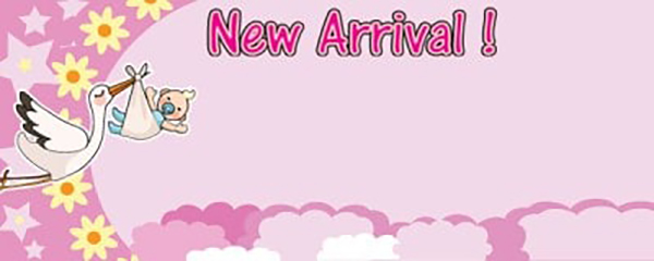 It's a Girl New Arrival Small Personalised Banner- 4ft x 2ft