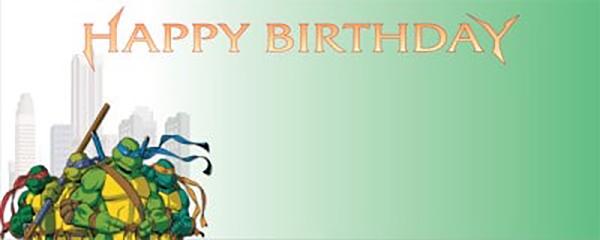 Ninja Turtle Green Birthday Theme Design Small Personalised Banner - 4ft x 2ft