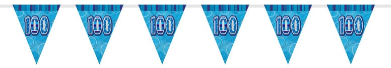 Blue Glitz 100th Birthday Bunting - 12 Ft / 366cm