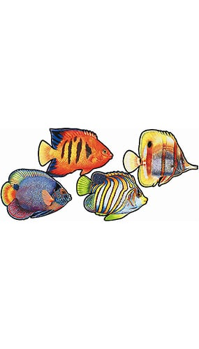 Coral Reef Fish Decorative Cutouts - 16 Inches / 41cm - Pack of 4 Product Image