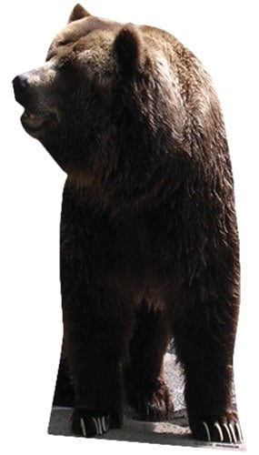 Grizzly Bear Lifesize Cardboard Cutout - 165cm Product Gallery Image